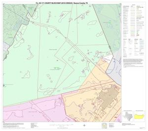 Primary view of object titled 'P.L. 94-171 County Block Map (2010 Census): Nueces County, Block 11'.