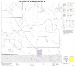 Primary view of object titled 'P.L. 94-171 County Block Map (2010 Census): Nolan County, Block 15'.
