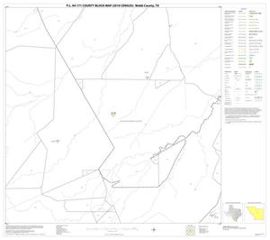 Primary view of object titled 'P.L. 94-171 County Block Map (2010 Census): Webb County, Block 30'.