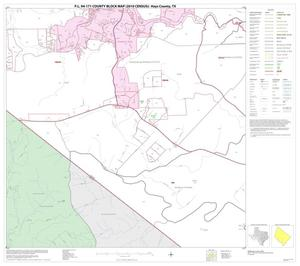 Primary view of object titled 'P.L. 94-171 County Block Map (2010 Census): Hays County, Block 13'.