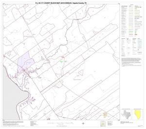 Primary view of object titled 'P.L. 94-171 County Block Map (2010 Census): Zapata County, Block 10'.