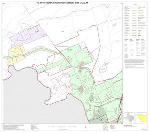 Primary view of object titled 'P.L. 94-171 County Block Map (2010 Census): Webb County, Block 35'.