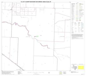 Primary view of object titled 'P.L. 94-171 County Block Map (2010 Census): Dallam County, Block 8'.