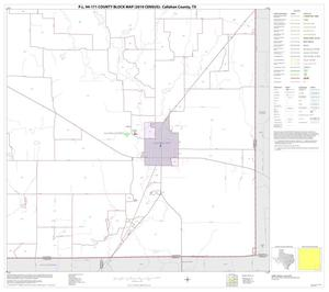 Primary view of object titled 'P.L. 94-171 County Block Map (2010 Census): Callahan County, Block 16'.