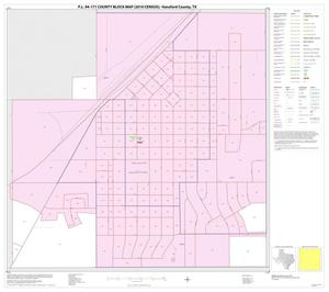 Primary view of object titled 'P.L. 94-171 County Block Map (2010 Census): Hansford County, Inset C01'.
