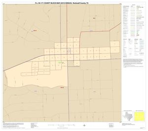 Primary view of object titled 'P.L. 94-171 County Block Map (2010 Census): Rockwall County, Inset A01'.