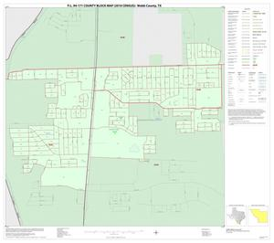 Primary view of object titled 'P.L. 94-171 County Block Map (2010 Census): Webb County, Inset F01'.