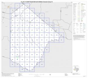 Primary view of object titled 'P.L. 94-171 County Block Map (2010 Census): Brewster County, Index'.