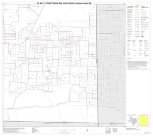 Primary view of object titled 'P.L. 94-171 County Block Map (2010 Census): Cochran County, Block 9'.