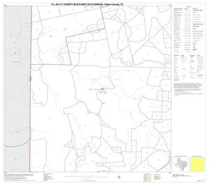Primary view of object titled 'P.L. 94-171 County Block Map (2010 Census): Nolan County, Block 9'.