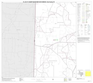 Primary view of object titled 'P.L. 94-171 County Block Map (2010 Census): Irion County, Block 5'.
