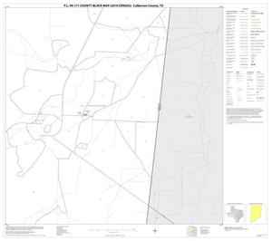 Primary view of object titled 'P.L. 94-171 County Block Map (2010 Census): Culberson County, Block 18'.