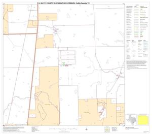Primary view of object titled 'P.L. 94-171 County Block Map (2010 Census): Collin County, Block 11'.