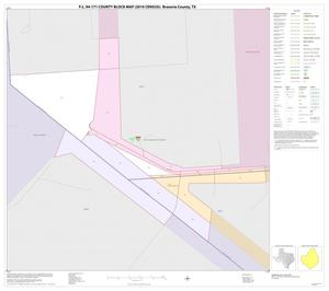 Primary view of object titled 'P.L. 94-171 County Block Map (2010 Census): Brazoria County, Inset E01'.