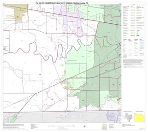 Primary view of object titled 'P.L. 94-171 County Block Map (2010 Census): Wichita County, Block 11'.