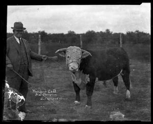 Primary view of object titled '[Man and bull]'.