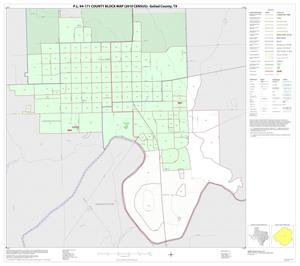 Primary view of object titled 'P.L. 94-171 County Block Map (2010 Census): Goliad County, Inset A01'.