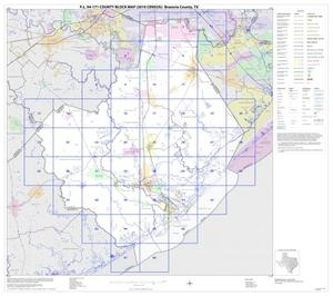 Primary view of object titled 'P.L. 94-171 County Block Map (2010 Census): Brazoria County, Index'.