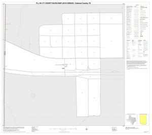 Primary view of object titled 'P.L. 94-171 County Block Map (2010 Census): Coleman County, Inset D01'.