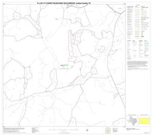 Primary view of object titled 'P.L. 94-171 County Block Map (2010 Census): Sutton County, Block 14'.