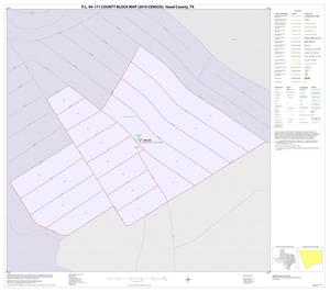 Primary view of object titled 'P.L. 94-171 County Block Map (2010 Census): Hood County, Inset B01'.