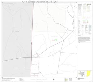 Primary view of object titled 'P.L. 94-171 County Block Map (2010 Census): Culberson County, Block 7'.