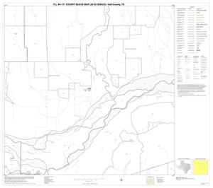 Primary view of object titled 'P.L. 94-171 County Block Map (2010 Census): Hall County, Block 7'.