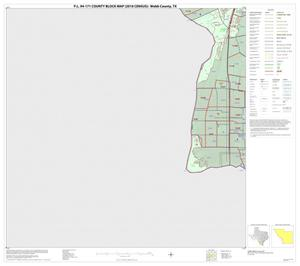 Primary view of object titled 'P.L. 94-171 County Block Map (2010 Census): Webb County, Block 41'.
