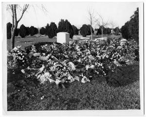 Primary view of object titled '[Flowers in graveyard]'.