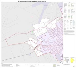Primary view of object titled 'P.L. 94-171 County Block Map (2010 Census): Brewster County, Inset A01'.