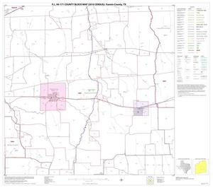 Primary view of object titled 'P.L. 94-171 County Block Map (2010 Census): Fannin County, Block 10'.
