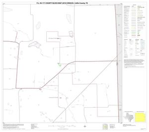 Primary view of object titled 'P.L. 94-171 County Block Map (2010 Census): Collin County, Block 49'.