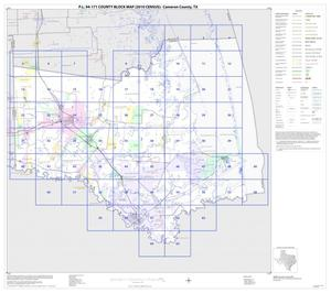 Primary view of object titled 'P.L. 94-171 County Block Map (2010 Census): Cameron County, Index'.