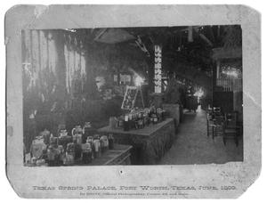 Primary view of object titled '[Texas Spring Palace]'.