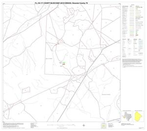 Primary view of object titled 'P.L. 94-171 County Block Map (2010 Census): Brewster County, Block 6'.