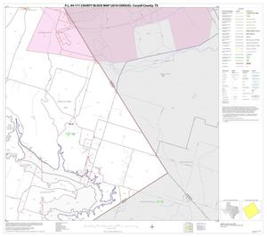 Primary view of object titled 'P.L. 94-171 County Block Map (2010 Census): Coryell County, Block 19'.