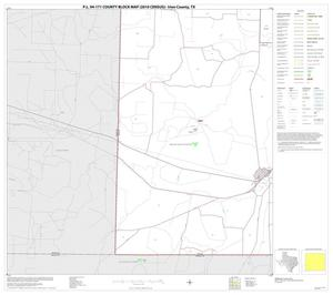 Primary view of object titled 'P.L. 94-171 County Block Map (2010 Census): Irion County, Block 9'.