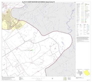 Primary view of object titled 'P.L. 94-171 County Block Map (2010 Census): Bosque County, Block 20'.