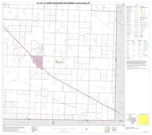 Primary view of object titled 'P.L. 94-171 County Block Map (2010 Census): Castro County, Block 9'.