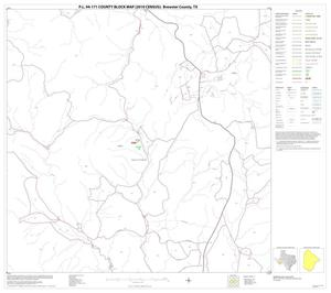 Primary view of object titled 'P.L. 94-171 County Block Map (2010 Census): Brewster County, Block 17'.