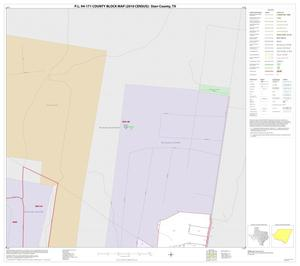 Primary view of object titled 'P.L. 94-171 County Block Map (2010 Census): Starr County, Inset G01'.