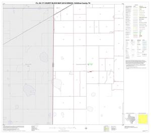 Primary view of object titled 'P.L. 94-171 County Block Map (2010 Census): Ochiltree County, Block 9'.