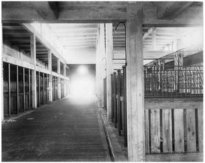 Primary view of object titled '[Cattle Barn at the North Stockyards]'.