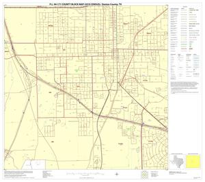 Primary view of object titled 'P.L. 94-171 County Block Map (2010 Census): Denton County, Block 45'.