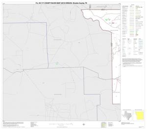 Primary view of object titled 'P.L. 94-171 County Block Map (2010 Census): Brooks County, Block 1'.