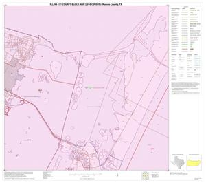 Primary view of object titled 'P.L. 94-171 County Block Map (2010 Census): Nueces County, Block 27'.
