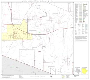 Primary view of object titled 'P.L. 94-171 County Block Map (2010 Census): Bexar County, Block 58'.