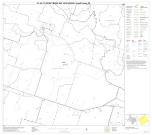 Primary view of object titled 'P.L. 94-171 County Block Map (2010 Census): Coryell County, Block 10'.