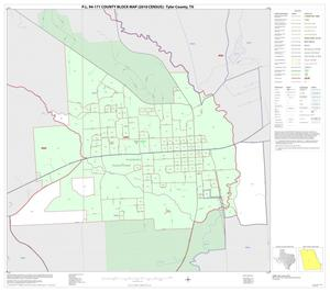 Primary view of object titled 'P.L. 94-171 County Block Map (2010 Census): Tyler County, Inset B01'.