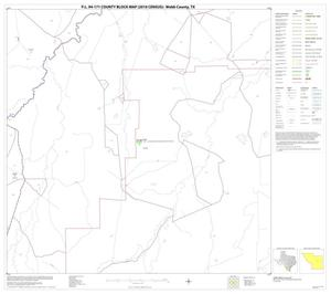 Primary view of object titled 'P.L. 94-171 County Block Map (2010 Census): Webb County, Block 31'.
